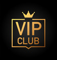 vip club label on black background vector image