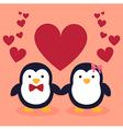 Cute Penguin Couple Cartoon Heart vector image