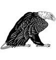 bald eagle black and white vector image vector image