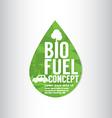 Bio Fuel Green Concept vector image vector image