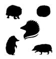 hedgehogSet vector image