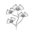 minimalist tattoo flower nature line art herb vector image vector image
