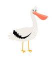 pelican cartoon bird icon vector image vector image