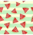 pieces watermelon pattern vector image
