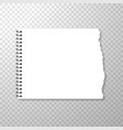 torn piece of squared paper from spiral bound vector image vector image