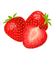 whole and slice strawberry color flat vector image