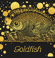 banner with a gold fish vector image