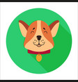 cute dog muzzle cartoon flat icon vector image vector image