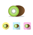 kiwi fruit icon vector image