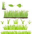 set of green grass vector image