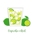 caipirinha cocktail paper art style vector image