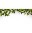 Christmas banner with spruce branches vector image vector image