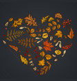 heart design on dark background with rowan rowan vector image vector image