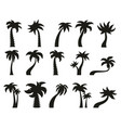 palm trees silhouettes tropical botany palm tree vector image