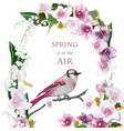 spring bird on blossom cherry tree branch vector image vector image