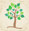 Brown tree vector image