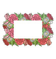 frame of hand drawn roses and chamomiles with a vector image vector image