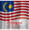 Malaysia Flag Curtain vector image