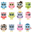 Owls with accessories vector image