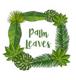 square frame of tropical palm leaves with place vector image vector image
