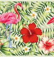 Beautiful bird pink flamingo hibiscus and