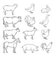 meat symbols hand drawn farm animals vintage vector image vector image