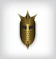 Medieval gold warrior helmet vector image vector image