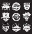 mountain travel white emblems on dark vector image vector image