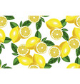 nice lemon background hand drawn seamless vector image vector image