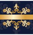 Royal classic ornament invitation vector image vector image