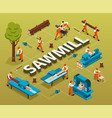 sawmill woodworking isometric flowchart vector image