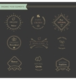 set vintage style elements for labels and vector image vector image