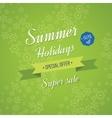 Summer holidays background Sale banner vector image vector image