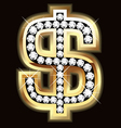 dollar bling vector image vector image