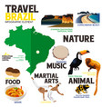 infographic elements for traveling to brazil vector image