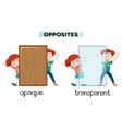 opposite word of opaque and transparent vector image vector image