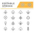 set editable stroke line icons leaf vector image vector image