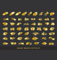 set of gold paint ink brush strokes brushes lin vector image vector image