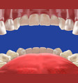 3d realistic mouth cavity view from inside vector image