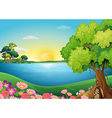 Fresh flowers at the riverbank near the treehouse vector image vector image