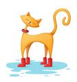 funny cute cartoon character vector image vector image