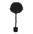 House and office plant tree silhouette vector image vector image
