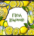 square frame of lemons lemonade with round place vector image vector image