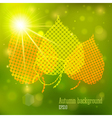 Autumn background with lights and yellow leaves vector image