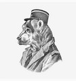 bear in military style animal dressed in security vector image vector image