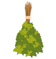 besom from foliage for washing in bath vector image