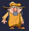 cartoon man with a beard in a robe tunic and hat vector image vector image