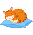 cat cartoon sleeping on a pillow vector image vector image