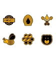 honey yellow icons vector image