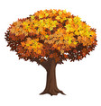 realistic isolated autumn tree vector image vector image